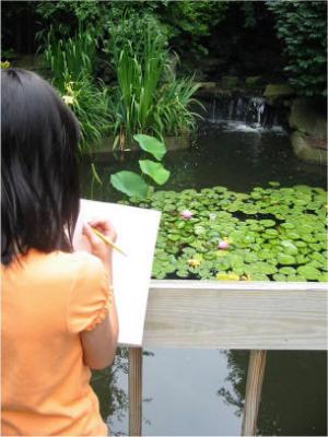 Sketching at the Botanical Gardens in our Neighborhood